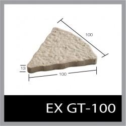 EX GT-100